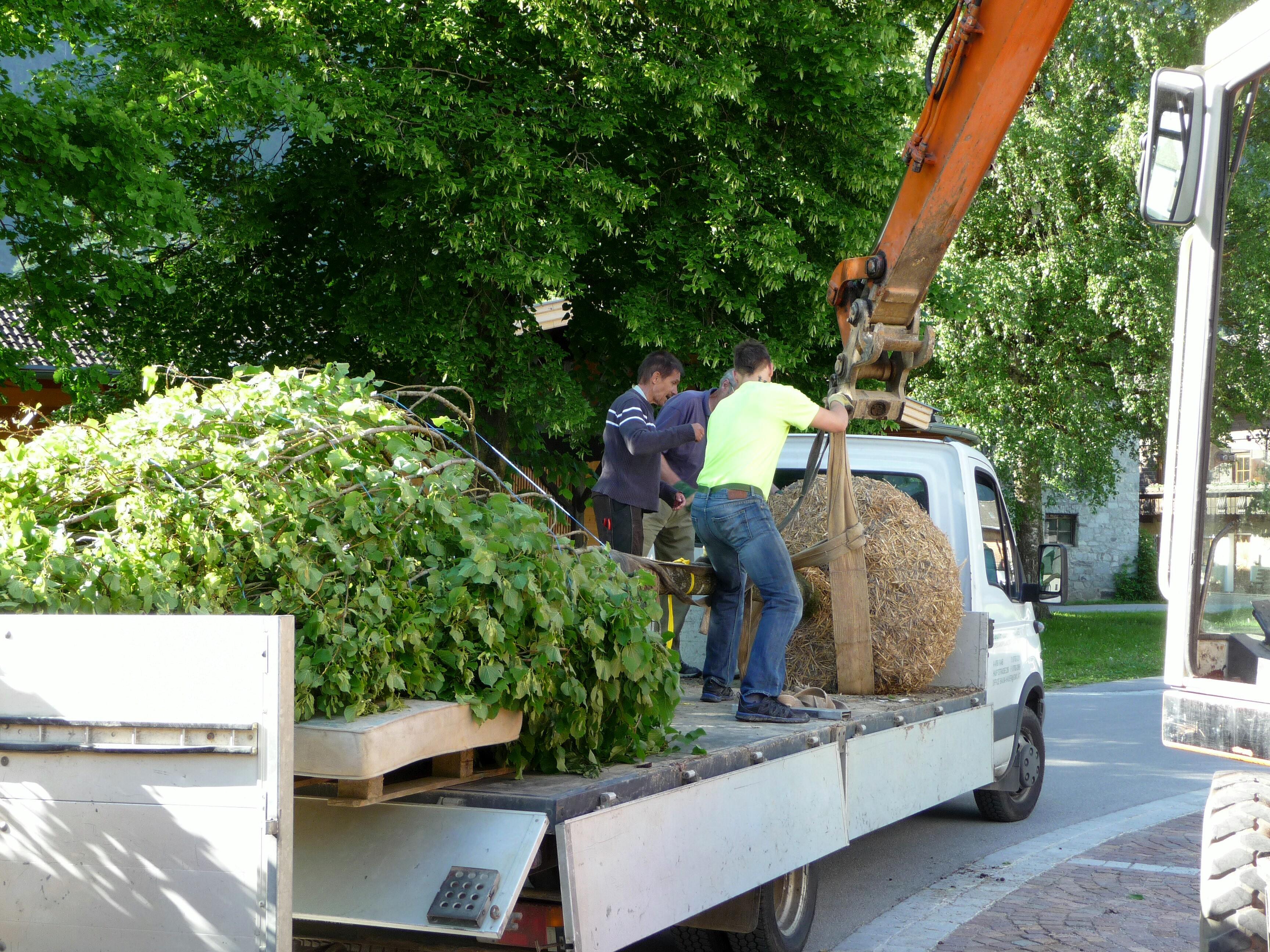 Anlieferung der Bäume