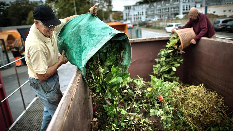 ***NEU***Baum- Strauch- und Grünschnittcontainer – ab 01. Oktober 2017