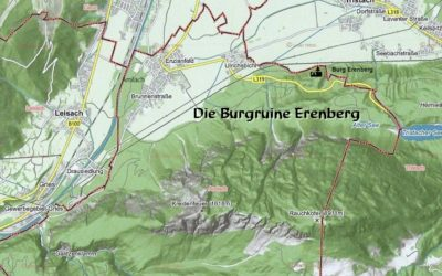 Die Burgruine Erenberg