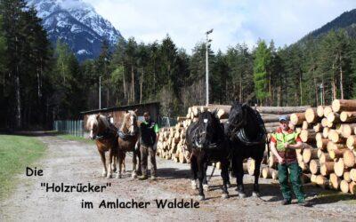 Die Amlacher Holzrücker